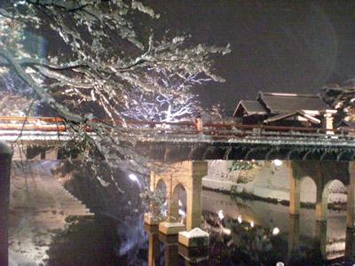 冬の中橋ライトアップ3.jpg