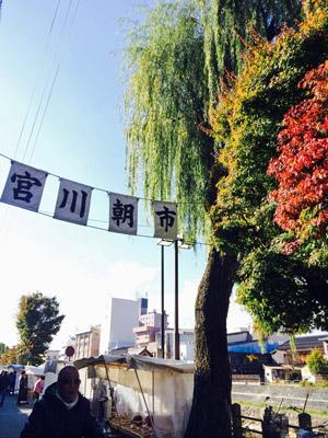宮川朝市.jpg